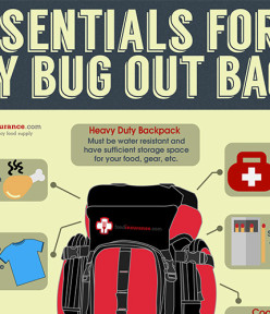 Essentials For A DIY Bug Out Bag
